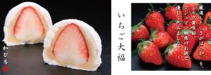 大阪 箕面 かむろのマシュマロ感覚のいちご大福です。